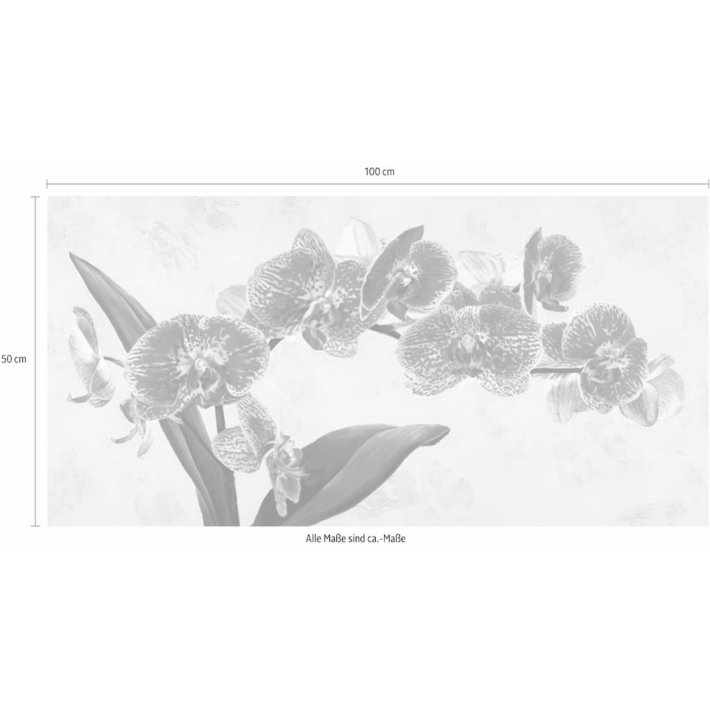 Home affaire Deco-Panel »LUCA VILLA / Purple Queens«, 100/50 cm