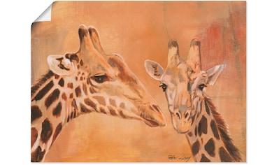 Artland Wandbild »Giraffen«, Wildtiere, (1 St.), in vielen Größen & Produktarten -... kaufen
