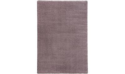 ASTRA Hochflor-Teppich »New Livorno«, rechteckig, 30 mm Höhe, Kurzflor, Wunschmaß,... kaufen