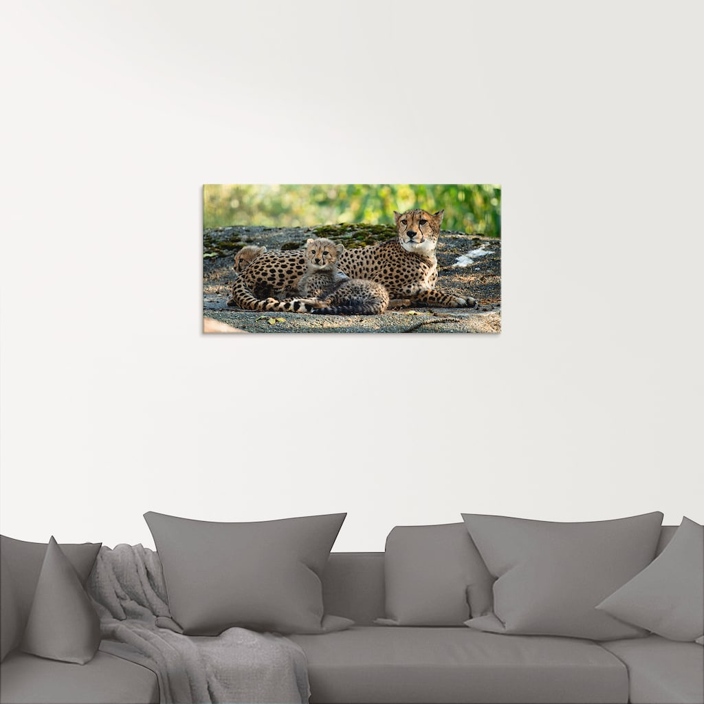 Artland Glasbild »Gepard 2«, Wildtiere, (1 St.)