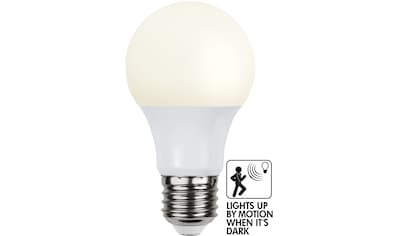 STAR TRADING LED-Leuchtmittel »Sensor opaque«, E27 kaufen