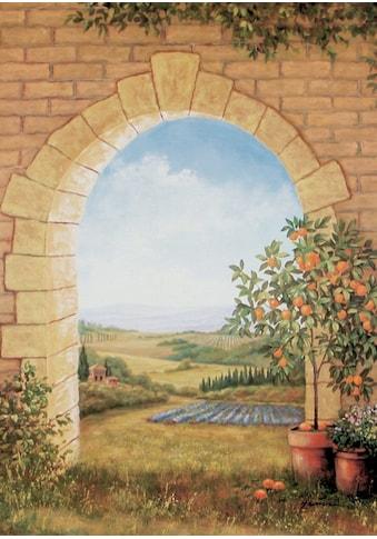 Home affaire Wandbild »Orangenbaum vor'm Torbogen« kaufen
