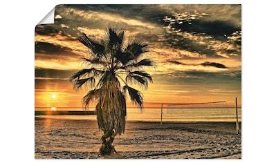 Artland Wandbild »Palme bei Sonnenuntergang«, Sonnenaufgang & -untergang, (1 St.), in... kaufen