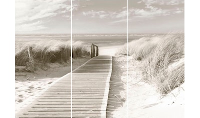 Wandbild »Dünen Weg zum Meer  -  Wandbild« (Set) kaufen
