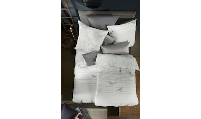 fleuresse Bettwäsche »Aspen 434004«, wie ein Vogel auf dem Drahtseil kaufen