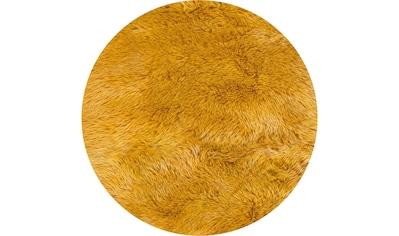 Fellteppich, »Ovium«, Andiamo, rund, Höhe 60 mm, maschinell gewebt kaufen