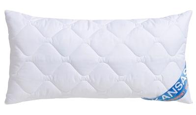 fan Schlafkomfort Exklusiv Kunstfaserkopfkissen »Kansas«, Bezug: 100% Baumwolle, (1 St.) kaufen