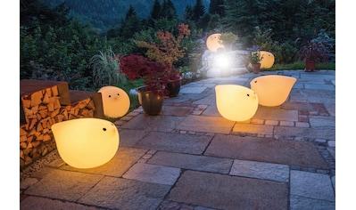 now! by hülsta Gartenleuchte »moonbirdy«, Warmweiß, zum Sitzen bis 100 kg kaufen