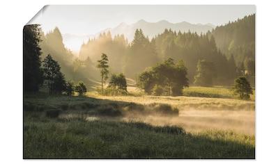 Artland Wandbild »Sommermorgen in den Alpen«, Wiesen & Bäume, (1 St.), in vielen... kaufen