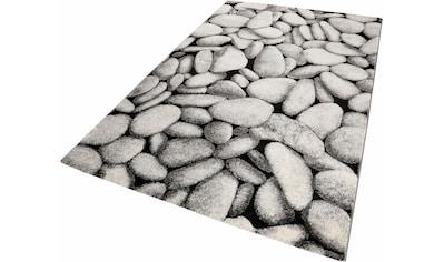Teppich, »Stony Island«, Wecon home, rechteckig, Höhe 13 mm, maschinell gewebt kaufen