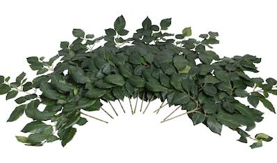 Botanic-Haus Kunstzweig »Buchenzweig« kaufen