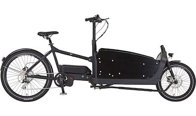 Prophete E - Bike »PROPHETE CARGO E - Bike 1.1«, 8 Gang Mittelmotor 250 W kaufen