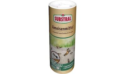 SUBSTRAL Ameisenmittel 500 g kaufen