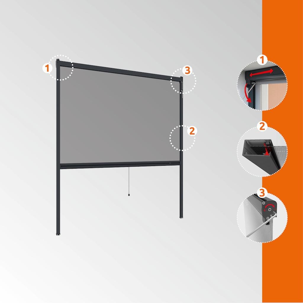 Windhager Insektenschutz-Rollo »PLUS«, BxH: 160x160 cm