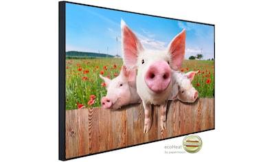 Papermoon Infrarotheizung »Schweine in Blumenwiese«, sehr angenehme Strahlungswärme kaufen