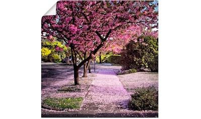 Artland Wandbild »Fallende Blütenblätter«, Bäume, (1 St.), in vielen Größen & Produktarten - Alubild / Outdoorbild für den Außenbereich, Leinwandbild, Poster, Wandaufkleber / Wandtattoo auch für Badezimmer geeignet kaufen