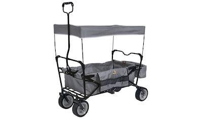 Pinolino® Bollerwagen »Paxi« kaufen