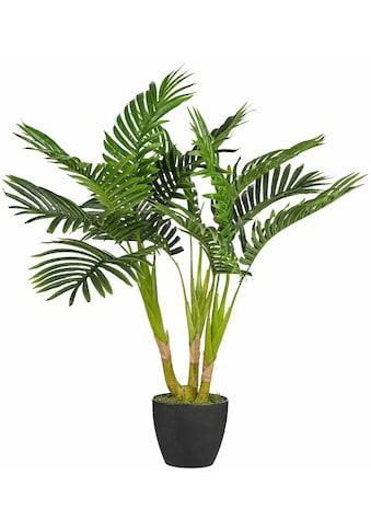 Creativ green Kunstpalme »Kentiapalme« (1 Stück) kaufen