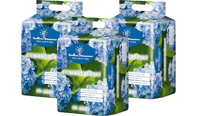 ENDLESS SUMMER Hortensienerde , blau, 3x20 Liter kaufen