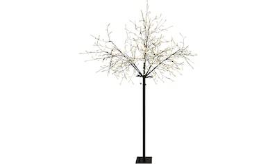 näve Außen - Stehlampe »Deko Baum« kaufen