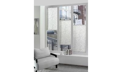 DELAVITA Plissee nach Maß »Black & White«, Lichtschutz, mit Bohren, verspannt kaufen