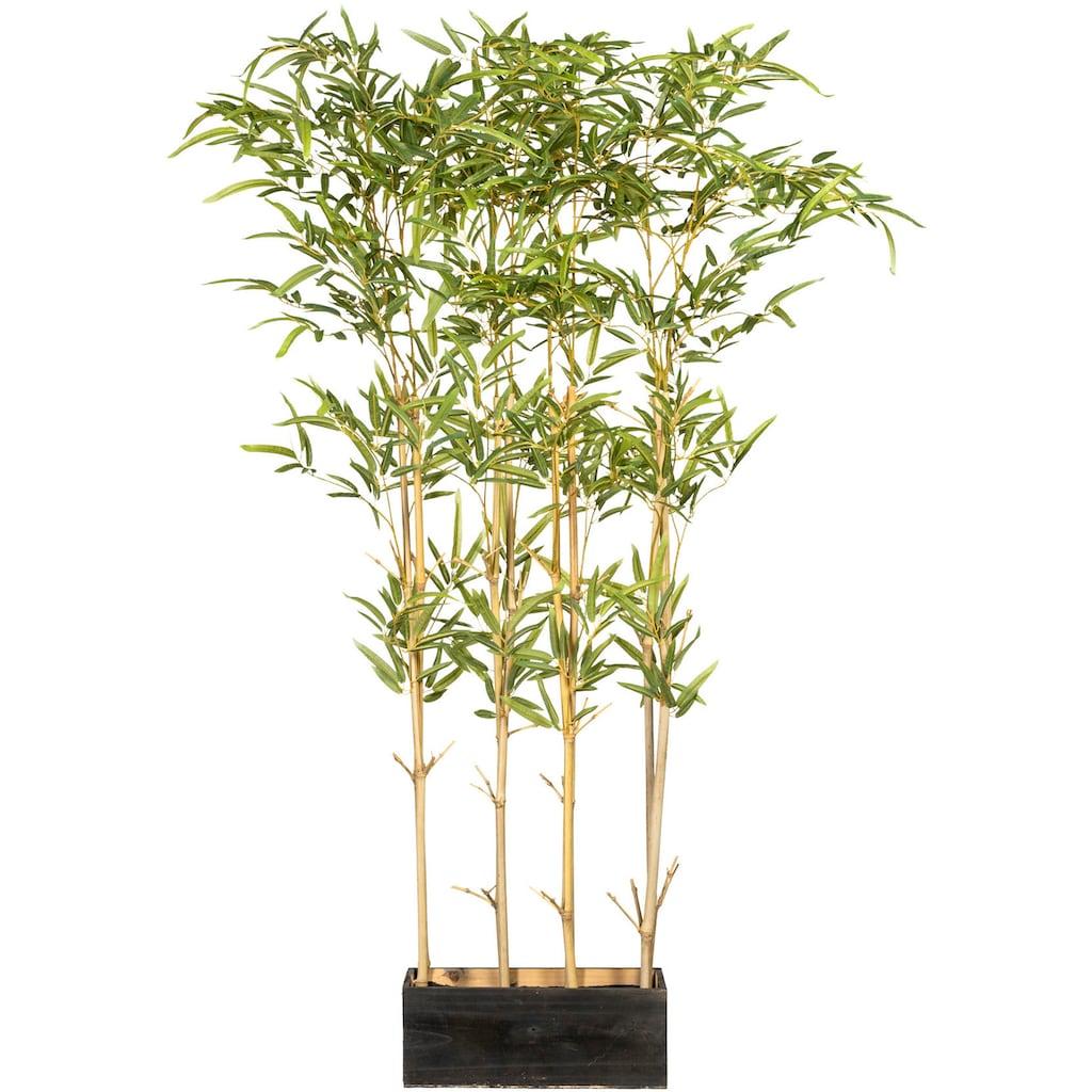 Creativ green Künstliche Zimmerpflanze »Bambusraumteiler«, im Holzkasten