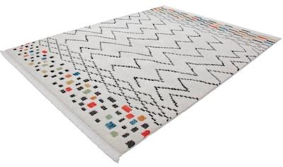 Teppich, »Agadir 410«, Kayoom, rechteckig, Höhe 23 mm, maschinell gewebt kaufen