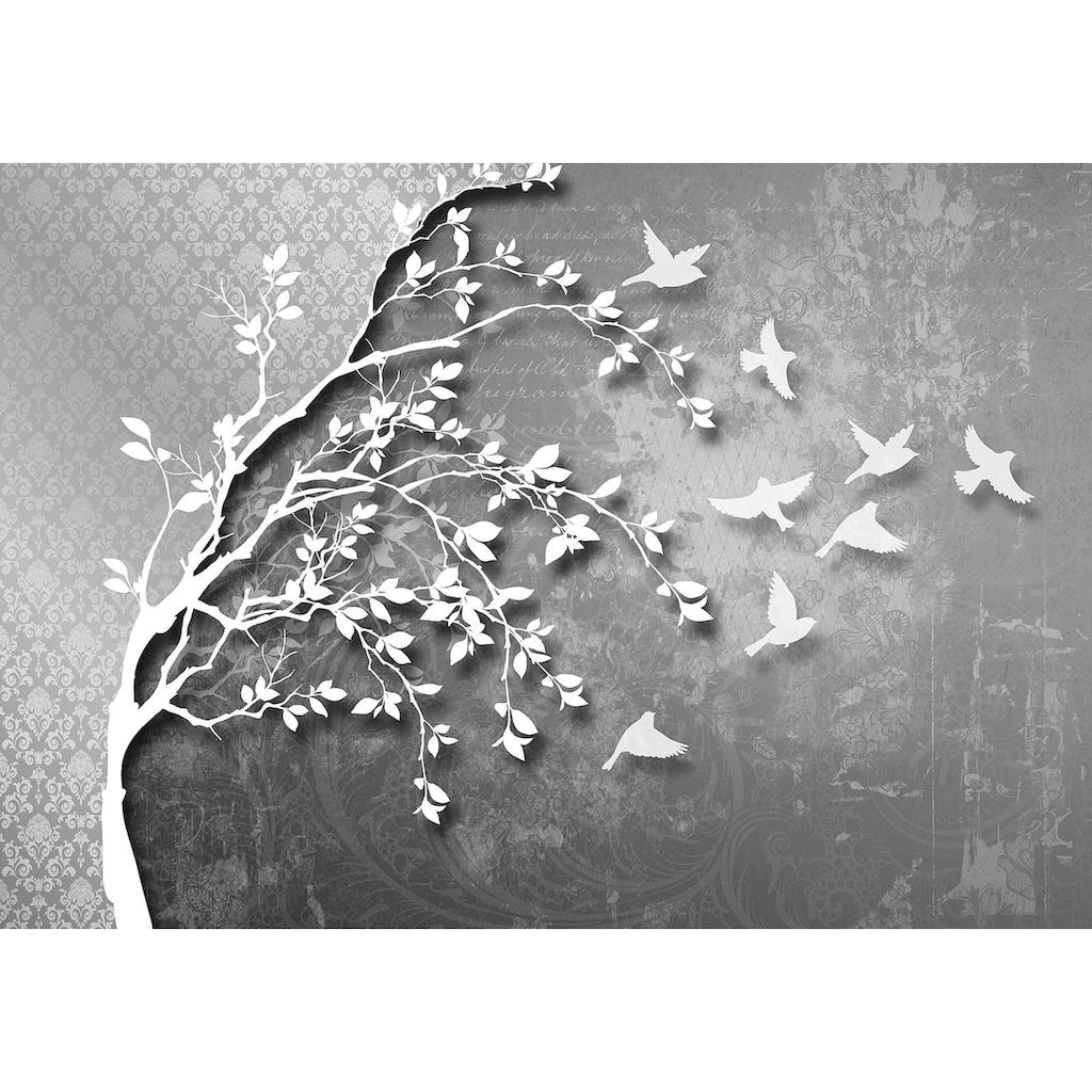 Consalnet Vliestapete »Silber Baum mit Vögeln«, verschiedene Motivgrößen, für das Büro oder Wohnzimmer