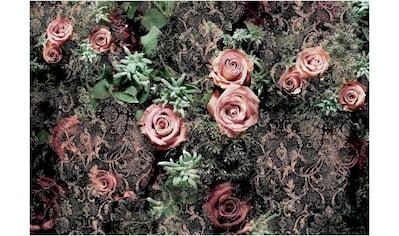 KOMAR Set: Fototapete »Velvet«, Ausgezeichnet lichtbeständig kaufen