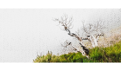 Architects Paper Fototapete »Atelier 47 Death Tree Puzzle 2«, Wald kaufen