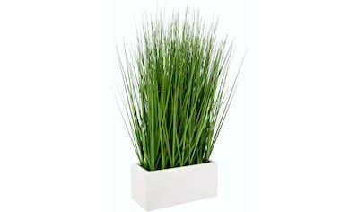 I.GE.A. Kunstgras »Gras« (1 Stück) kaufen