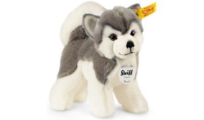 Steiff Kuscheltier »Berny Husky, 17 cm« kaufen