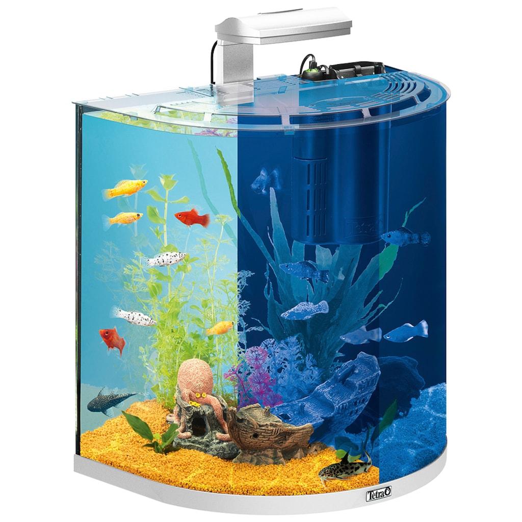 Tetra Aquarien-Set »AquaArt LED Explorer Line«, BxTxH: 51x33,5x51,5 cm, 60 l, inkl. GC 40 Bodenreiniger