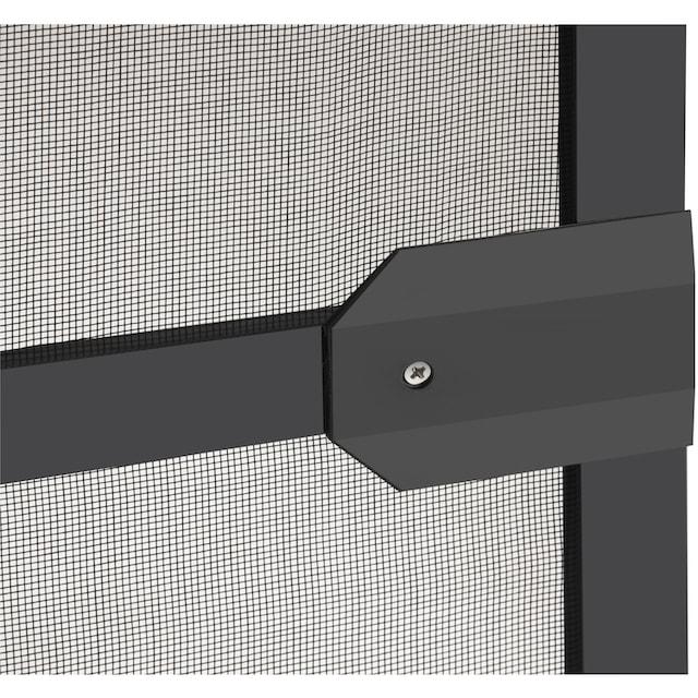 HECHT Insektenschutz-Tür »BASIC«, anthrazit/anthrazit, BxH: 100x210 cm