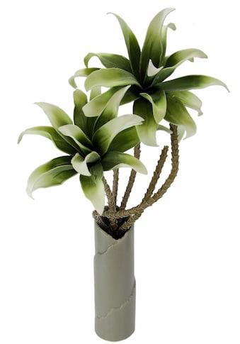 I.GE.A. Kunstpflanze »Soft - Magnolie in Vase« kaufen