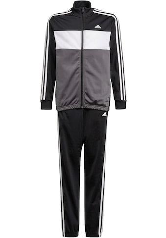 adidas Performance Trainingsanzug »ADIDAS BOYS ESSENTIALS TIBERIO TRACKSUIT« kaufen