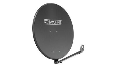 SCHWAIGER Sat - Spiegel, Aluminium Offset Antenne (88cm) »SPI910 - Serie« kaufen