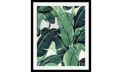 queence Bild »Blätter«, in 3 Größen, gerahmt kaufen
