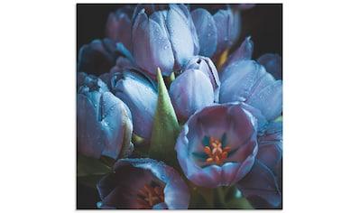 Artland Glasbild »Tulpen Blau«, Blumen, (1 St.) kaufen