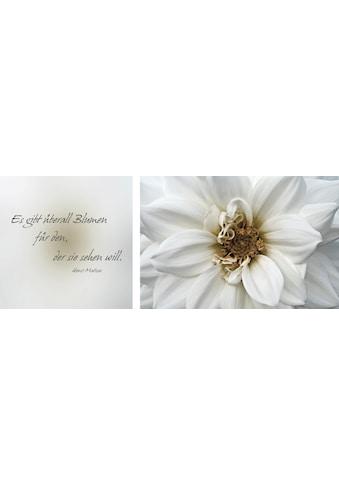 Leinwandbild »Blumen« (Set) kaufen