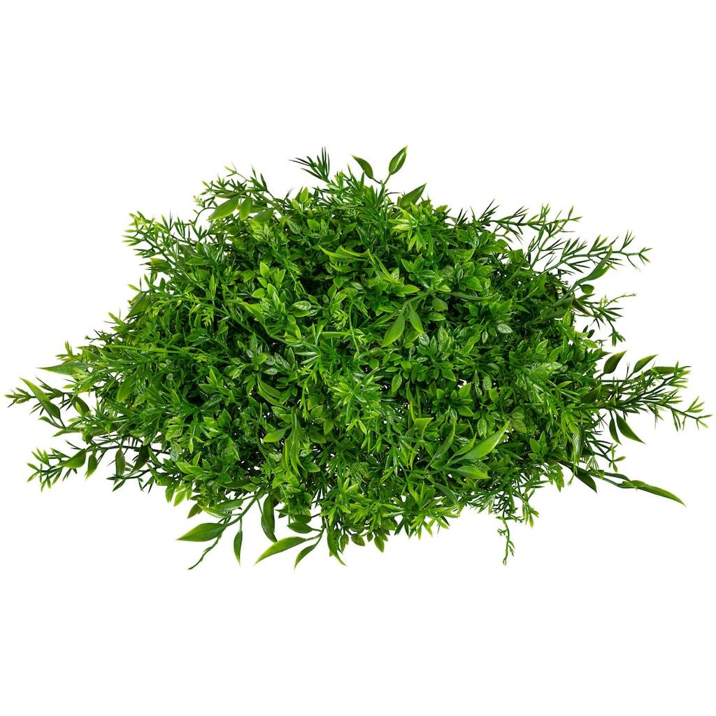 Creativ green Kunstpflanze »Mixgras-Halbkugel«