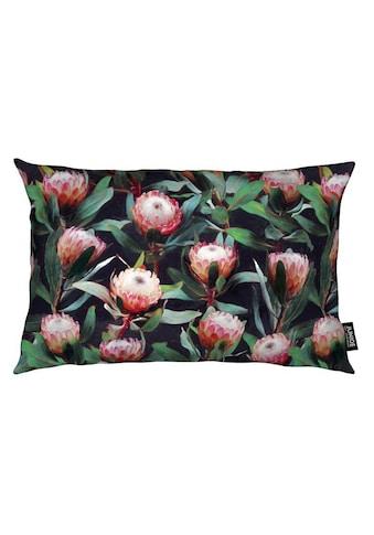 Dekokissen, »Evening Proteas in Color«, Juniqe kaufen