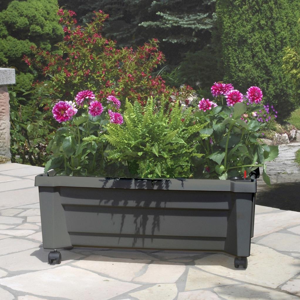 KHW Spalier Calypso, BxTxH: 79x35x115 cm, mit Rollen und Bewässerungssystem grau Zubehör Pflanzen Garten Balkon