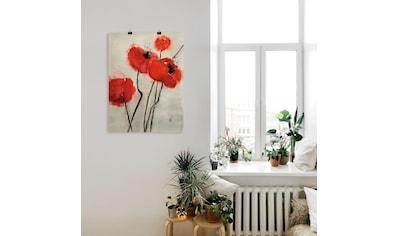 Artland Wandbild »Roter Mohn« kaufen