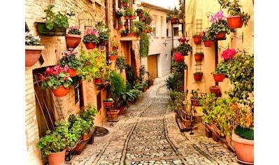 Papermoon Fototapete »Alley in Spello Umbria« kaufen
