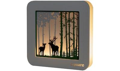 Weigla LED-Bild »Square - Wandbild Wald«, (1 St.), mit Timerfunktion kaufen