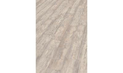 EGGER Packung: Designboden »EHD020 Zapulla Pinie hell«, 1292 x 193, Stärke: 7,5 mm kaufen