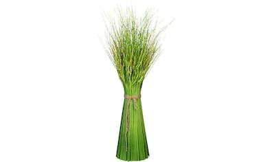 Creativ green Kunstgras »Grasbusch Dancing Queen« (1 Stück) kaufen