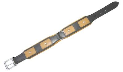HEIM Hundehalsband »London«, grün, Länge: 45  -  65 cm kaufen