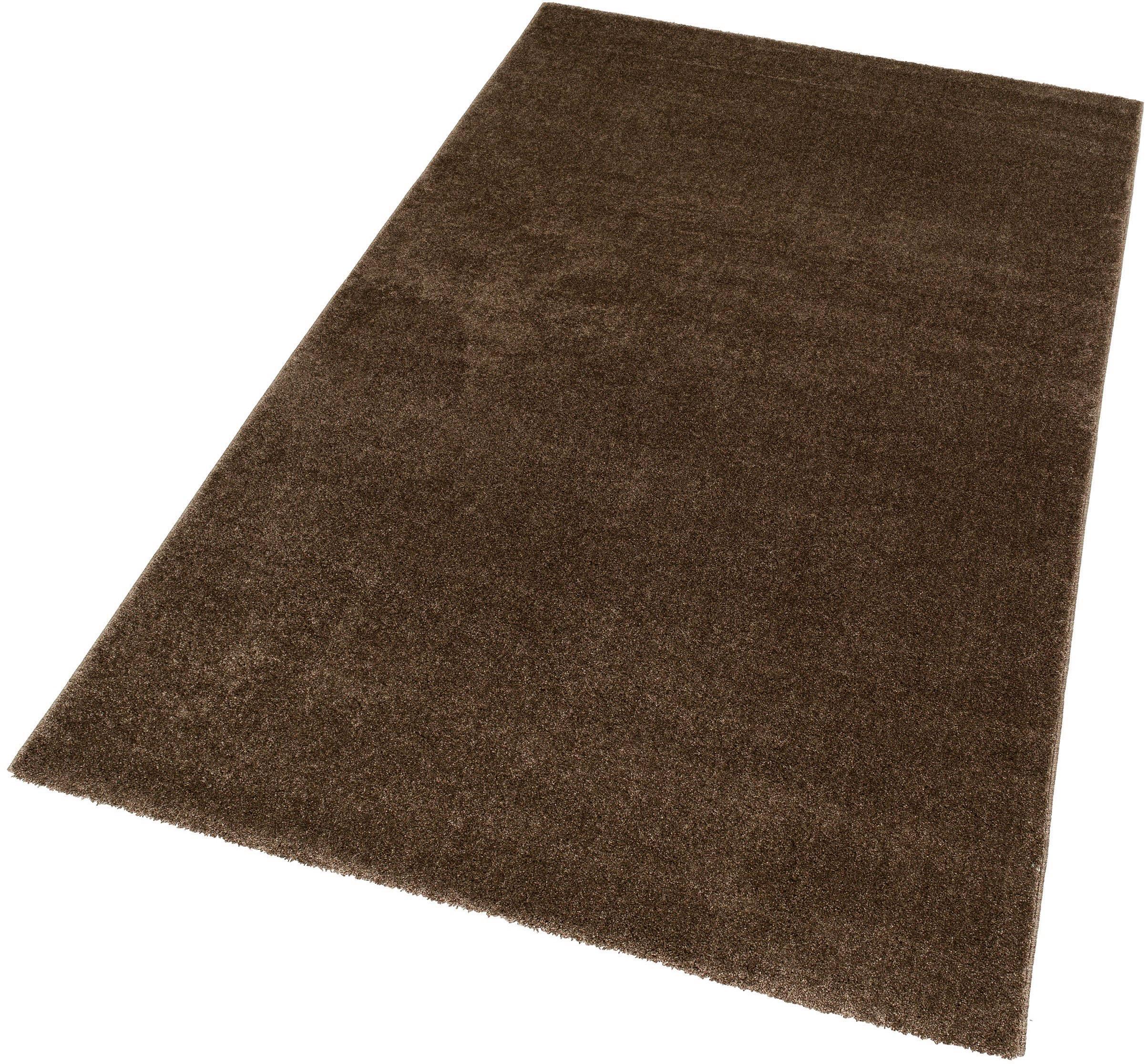 Teppich Ravello 170 ASTRA rechteckig Höhe 20 mm maschinell gewebt